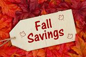 Fall Savings Message, Some Fall Leaves And A Wood Gift Tag With Text Fall Savings poster