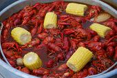 image of crawdads  - Crawfish Boil - JPG