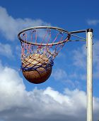 stock photo of netball  - Success - JPG
