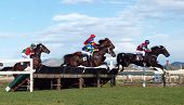 HASTINGS- June 27: Horses clearing the final hurdle at the Hawke's Bay Racing Winter Meet Hastings New Zealand 27 June 2008