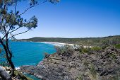 Beautiful, secluded, white sand beach in rocky shoreline, with eucalyptus tree, blue skies and calm