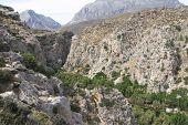 Cretan gorge at Preveli on the south coast