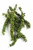 A drupe of green peppercorns from the vine, over white with a light shadow. These are the peppers fr