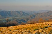 Evening Light From A Bald Mountain