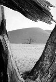 Desert Viewing Hole