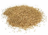 Grass Seed Pile