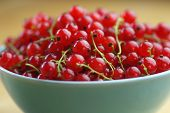 Red currant fruits in a bowl