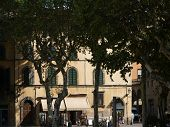 View of the Piazza Napoleone - Lucca Tuscany
