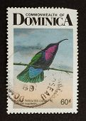 Dominica - 1968: Stamp Printed In Dominica