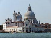 Punta della Dogana y saludo en Venecia