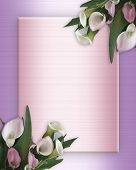 foto of beautiful flower  - Image composition of pink calla lilies for wedding birthday party invitation border or frame with copy space - JPG