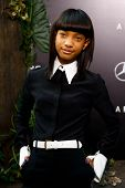 NEW YORK - 29 mei: Actrice Willow Smith woont de première van 'Na Earth' in de Ziegfeld Theatr