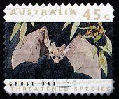 Estampilla Australia 1992 fantasma murciélago, mamífero