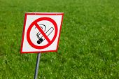 No Smoking Sign On Green Grass Background