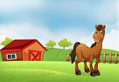 Illustration of a horse at the farm