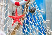 pic of scallop shell  - Fishing net with buoy and shell summer background - JPG