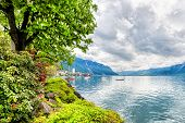 stock photo of montre  - Flowers and trees near Geneva lake Montreux - JPG