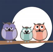Funny, staring owls sitting on branch on a full mon night - vector illustration
