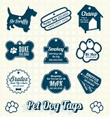 Vector Set: Pet Dog Name Tags
