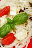 Spaghetti With Cheese And Tomatoes poster