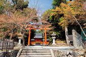 Torii gate in Arashiyama