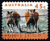 Selo postal Austrália 1994 canguru, mamífero Marsupial