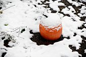 image of blanket snow  - A pumpkin covered in a blanket of freshly fallen snow. Room for copy space.