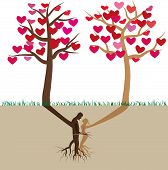Tree in love