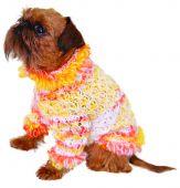 Постер, плакат: Собака в свитер