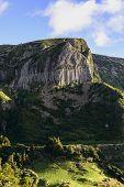Rochas Dos Bordoes, Flores Island, Azores Archipelago (portugal)