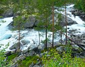 Summer Mountain River (norge)
