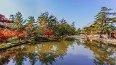 A pond in front of Todaiji Temple in Nara