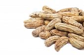 pic of groundnuts  - Boiled peanuts or groundnuts on white background - JPG