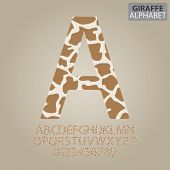 image of pale skin  - Set of Giraffe Skin Alphabet And Numbers Vector - JPG