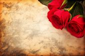 Valentine's day background, red roses on paper for romantic message