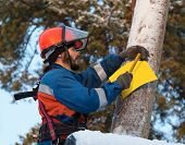 foto of electricity pylon  - Electrician attaches to electricity pylon information sign in the woods in winter