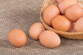 Fresh eggs in basket