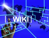 Wiki Screen Means Internet Information