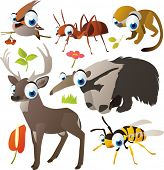 vector animal set: deer, wasp, bird, anteater, ant, saimiri