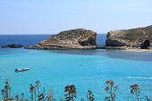 blue lagoon in Comino, Malta