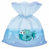 Illustration of a blue fish inside the plastic bag on a white background