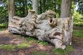 stock photo of hackney  - Part of a sawed ancient gigantic beech tree lying in a Dutch park - JPG