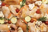 Chicken and vegetables baked in oven