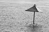 Lonely Black And White Parasol Flooding