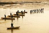 Unidentified Fisherman During Fish Harvest On Svet Pond, Trebon