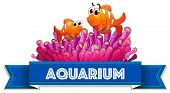 Aquarium label with clownfish and coral