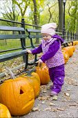 little girl in autumnal Central Park New York City USA