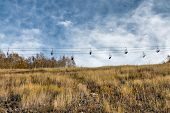 Empty ski lift in an alpine meadow
