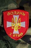 Kiev,Ukraine.Oct 16.Illustrative editorial.Pro-Ukranian nationaist formation Volyn chevron..At October 16,2014 in Kiev, Ukraine
