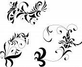 Ornaments imitation baroque ink drawing.
